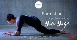 Formation de professeur·e de Yin Yoga à Lyon (69) @ Zenspace Yoga