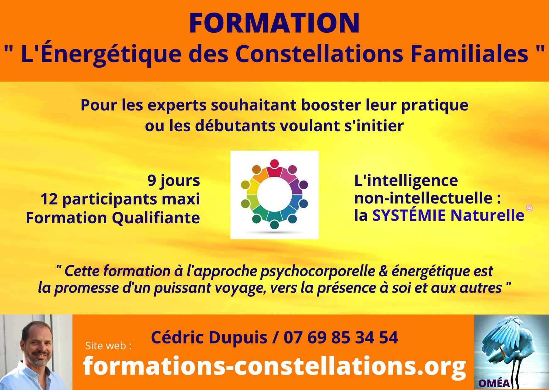 Formation : L'Énergétique des Constellations Familiales