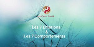 Formation Les sept émotions et les sept comportements