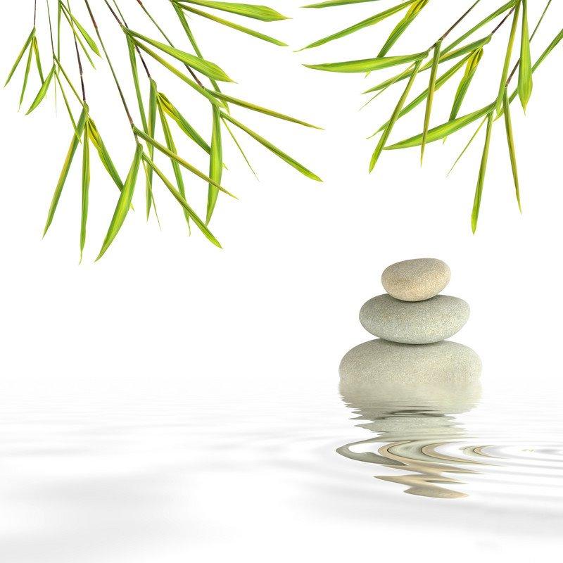Prendre soin de son lieu de vie par le feng shui et la géobiologie