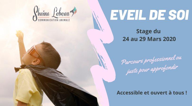 Stage Clé Eveil de soi à 83120 Sainte-Maxime
