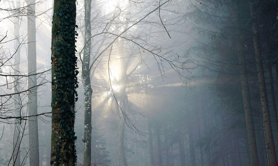 Stage: Roue de médecine, le solstice d'hiver