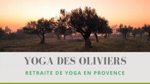 Yoga des Oliviers - retraite en Provence