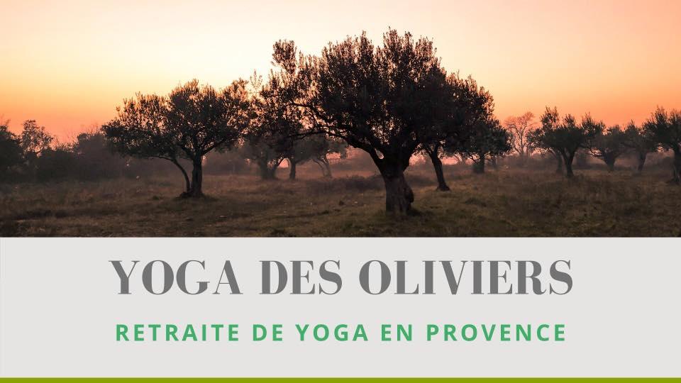 Yoga des Oliviers – retraite en Provence